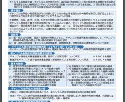 ギャンブル依存症対策法(概要)